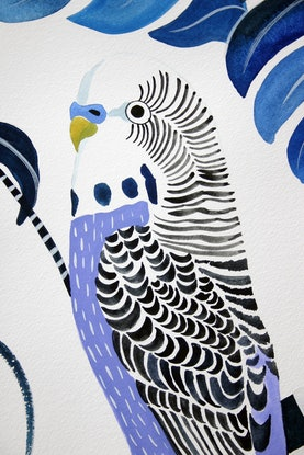 (CreativeWork) Ultra Violet Budgie & Monstera Deliciosa by Sally Browne. Other Media. Shop online at Bluethumb.