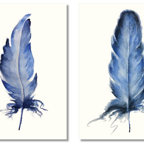 (CreativeWork) Bird Feathers Blue Indigo – Limited Edition Giclee Prints Ed. 3 of 5 by Elizabeth Vita. Print. Shop online at Bluethumb.