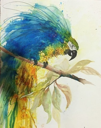 (CreativeWork) I Spy with my Little Eye by Gaye C Boltong. watercolour. Shop online at Bluethumb.