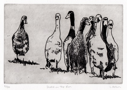 (CreativeWork) Ducks on the Run (Etching) Ed. 4 of 50 by Lydie Paton. print. Shop online at Bluethumb.