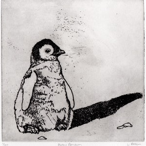 (CreativeWork) Baby Penguin (Etching) Ed. 1 of 20 by Lydie Paton. print. Shop online at Bluethumb.