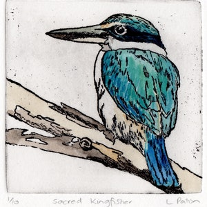 (CreativeWork) Sacred Kingfisher by Lydie Paton. mixed-media. Shop online at Bluethumb.