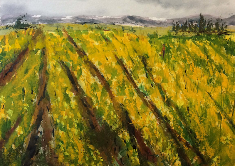 (CreativeWork) The Fields are Alive with the Mass of Golden Daffodils Gently Swaying in the Breeze by Margaret Morgan (Watkins). watercolour. Shop online at Bluethumb.