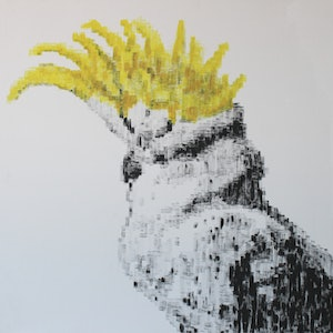 (CreativeWork) Cockatoo by Mark Williams. arcylic-painting. Shop online at Bluethumb.