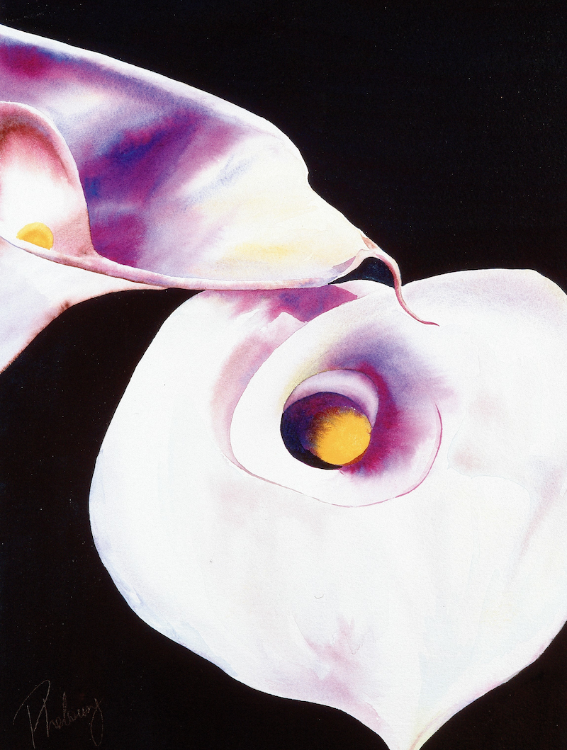 "(CreativeWork) CLASSIC SERIES ""ARUM LILY 2"" ORIGINAL by Sue PHELOUNG. mixed-media. Shop online at Bluethumb."