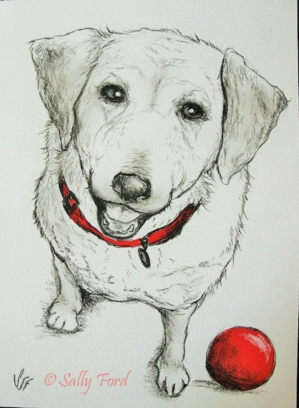 (CreativeWork) My Red Ball by Sally Ford. mixed-media. Shop online at Bluethumb.