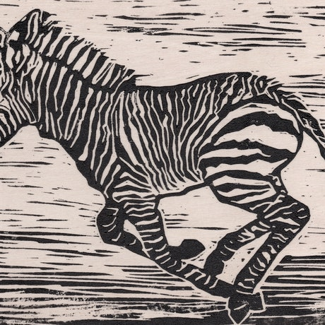 (CreativeWork) Baby Zebra (Linocut) Ed. 1 of 10 by Lydie Paton. Print. Shop online at Bluethumb.