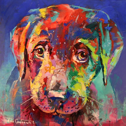 (CreativeWork) Labrador Puppy by Jos Coufreur. Acrylic. Shop online at Bluethumb.
