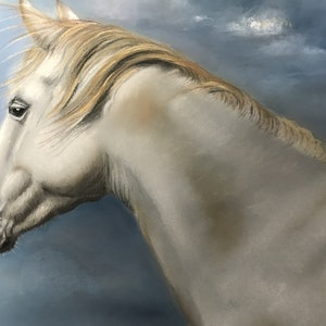 (CreativeWork) White horse by Marianne Bindemanis. #<Filter:0x00007fcb1a628ad0>. Shop online at Bluethumb.