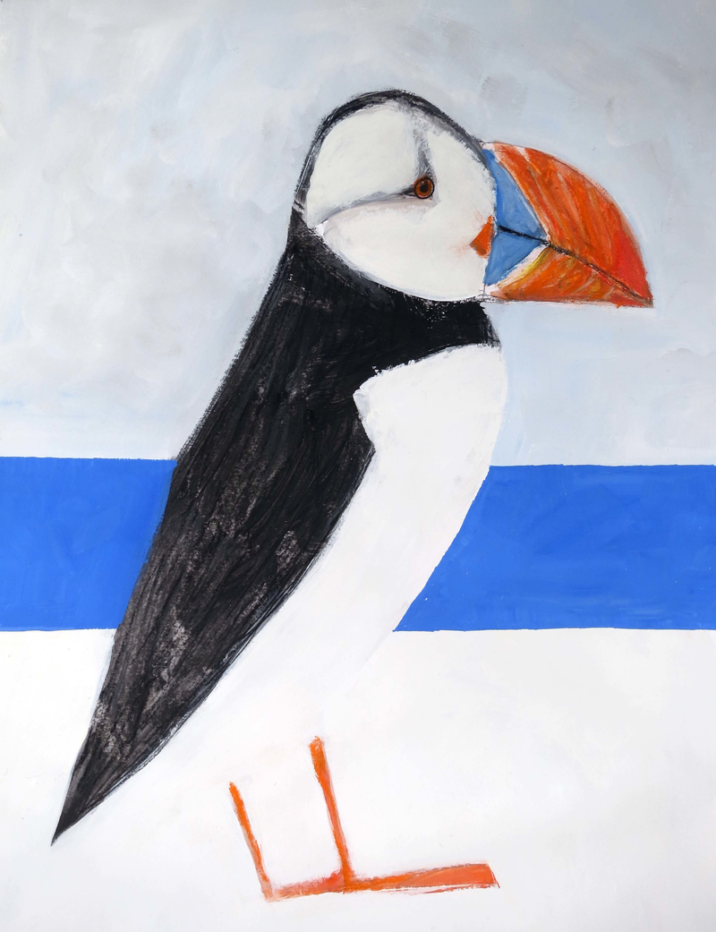 (CreativeWork) Puffin bird by John Graham. mixed-media. Shop online at Bluethumb.