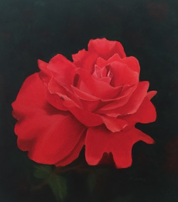 (CreativeWork) Red Beauty by Kathleen Pieterse. Other Media. Shop online at Bluethumb.