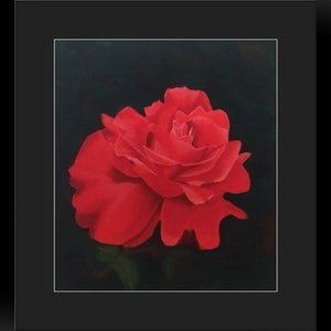 (CreativeWork) Red Beauty by Kathleen Pieterse. other-media. Shop online at Bluethumb.