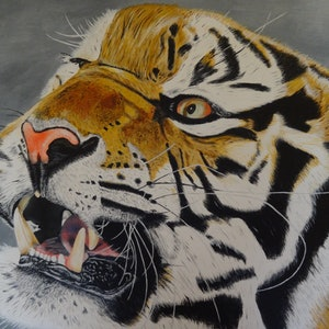 (CreativeWork) Tiger, tiger, burning bright........ by Evelyn James. arcylic-painting. Shop online at Bluethumb.