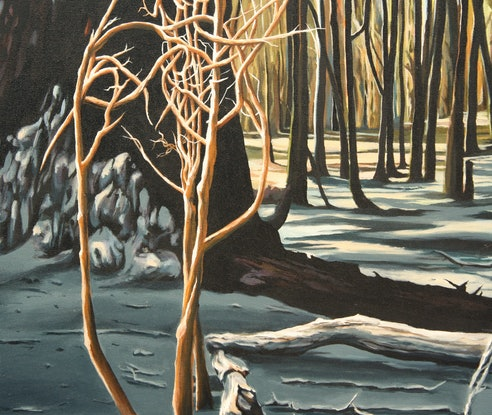 (CreativeWork) Aftermath at Lerderderg by Nerrida Parfitt. Acrylic Paint. Shop online at Bluethumb.