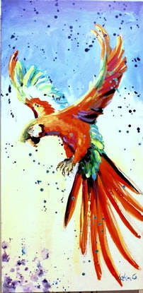 (CreativeWork) Red Macaw Cockatoo by Leeka Gruzdeff. Acrylic Paint. Shop online at Bluethumb.