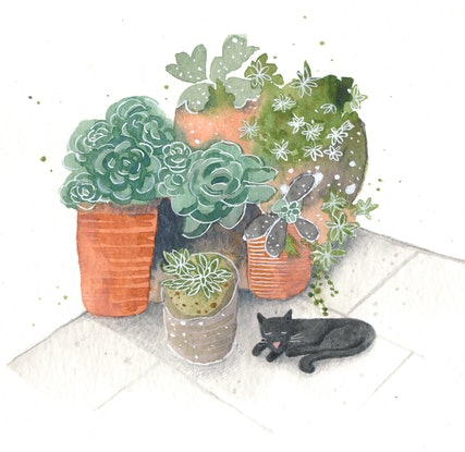 (CreativeWork) Afternoon snooze by Daniella Germain. Watercolour Paint. Shop online at Bluethumb.