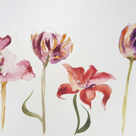 (CreativeWork) Backyard flowers by Amanda Cutlack. Watercolour Paint. Shop online at Bluethumb.
