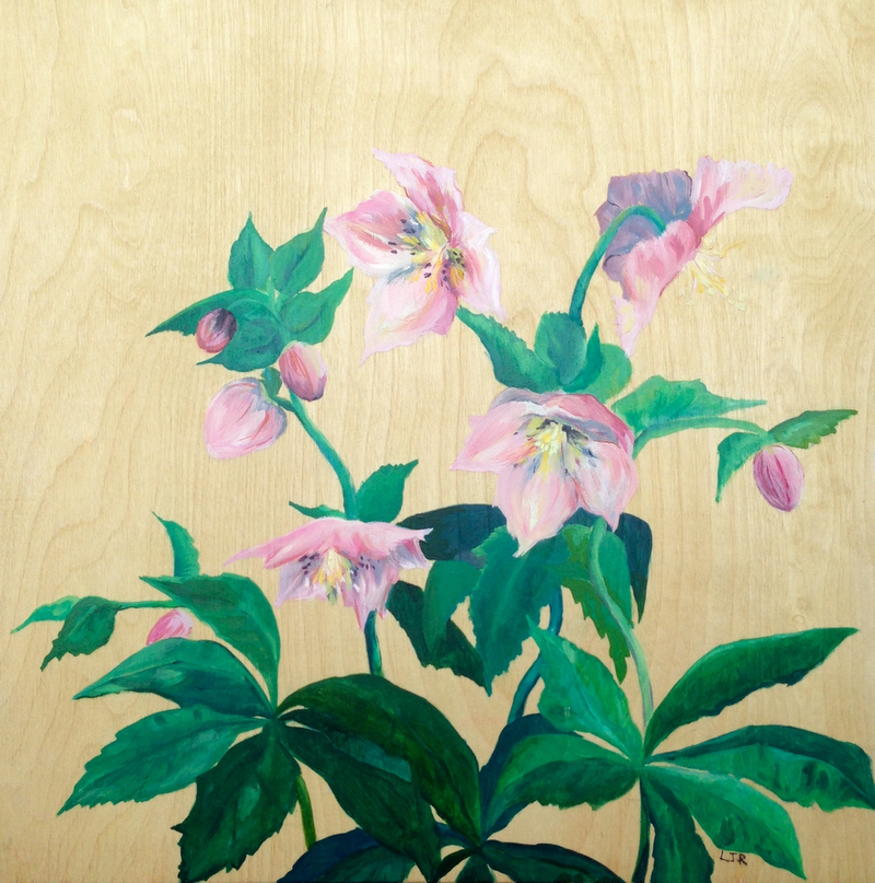 (CreativeWork) Hellebores by Lydie Paton. oil-painting. Shop online at Bluethumb.