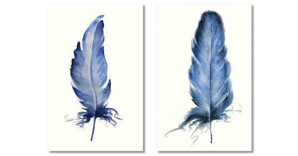bird feathers blue indigo limited edition giclee prints ed 4 of 5