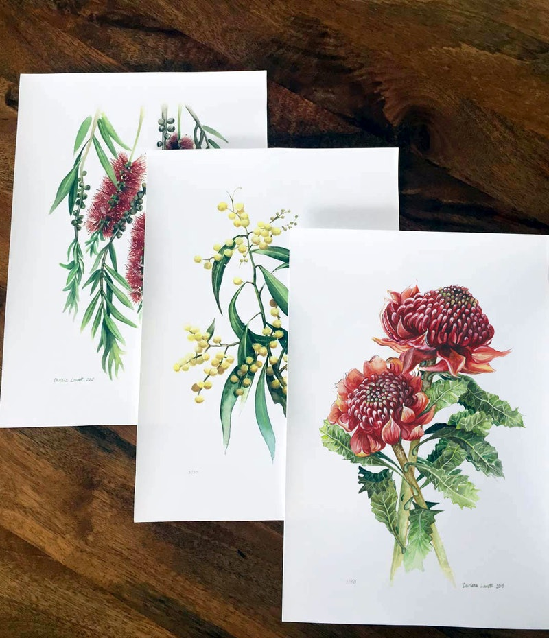 Australian Native Flowers Set Of 3 Limited Edition