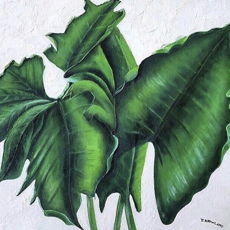 (CreativeWork) Foliage a Trois by Tracey Knowland. Oil Paint. Shop online at Bluethumb.