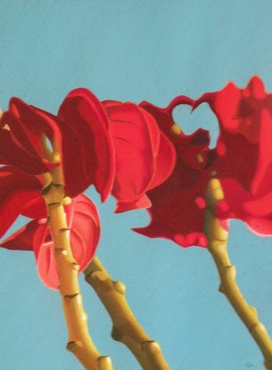 (CreativeWork) Magnolia by Colin Madgwick. Other Media. Shop online at Bluethumb.
