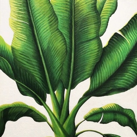 (CreativeWork) Life Grows On by Trace Knowland. Acrylic Paint. Shop online at Bluethumb.