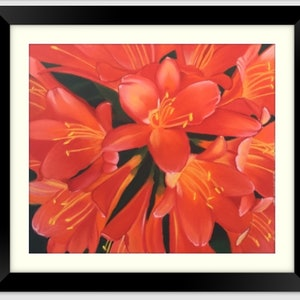 (CreativeWork) Clivias by Kathleen Pieterse. other-media. Shop online at Bluethumb.