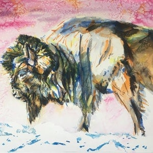 (CreativeWork) Bison by Sarah Poyser. watercolour. Shop online at Bluethumb.