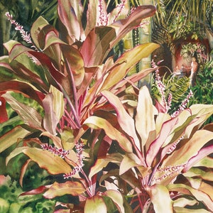 "(CreativeWork) THE CLASSIC SERIES  ""CORDYLINE ALFRESCO NOOSA""  ORIGINAL   by Sue PHELOUNG. watercolour. Shop online at Bluethumb."