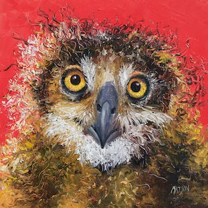 (CreativeWork) Owl on red background by Jan Matson. oil-painting. Shop online at Bluethumb.