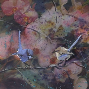 (CreativeWork) BLUE WREN PAIR by Anki Wickison. mixed-media. Shop online at Bluethumb.