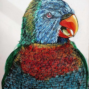 (CreativeWork) rosella smiling by Karynne Ledger. mixed-media. Shop online at Bluethumb.