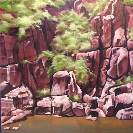 (CreativeWork) Cataract Gorge Launceston (Tasmania) by Stephen Kaldor. Oil Paint. Shop online at Bluethumb.
