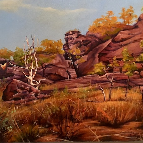 (CreativeWork) Landscape near Alice Spring  by Stephen Kaldor. Oil Paint. Shop online at Bluethumb.