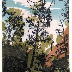 (CreativeWork) Native Pines in Aligator Gorge #2 Ed. 1 of 5 by Tina Moore. print. Shop online at Bluethumb.