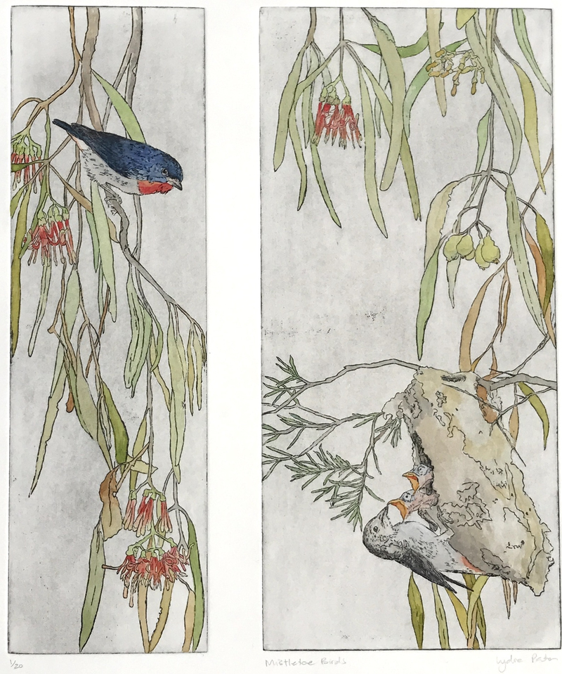 (CreativeWork) Mistletoe Birds - Large Double Panel Etching (Edition 1 of 20) by Lydie Paton. mixed-media. Shop online at Bluethumb.