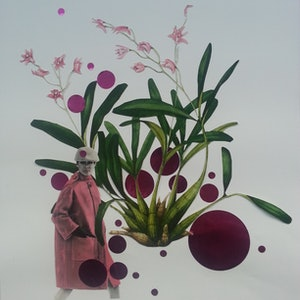 (CreativeWork) SALE 'Orchid Series - #1' by Karen Coull. mixed-media. Shop online at Bluethumb.