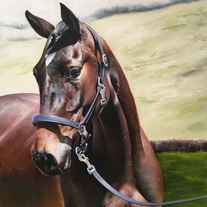 (CreativeWork) Horse by Mahyat Tehrany. oil-painting. Shop online at Bluethumb.