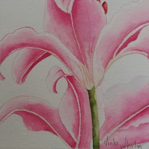 (CreativeWork) Stargazer lily 3 - Botanicals  by Vicki Whalan. watercolour. Shop online at Bluethumb.