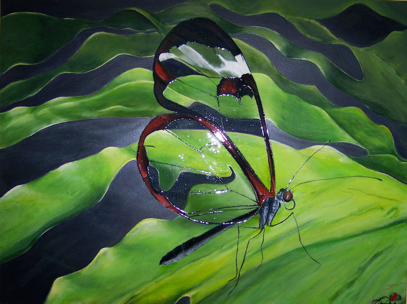 (CreativeWork) GlassWing Butterfly. by tom-paul jagg. mixed-media. Shop online at Bluethumb.