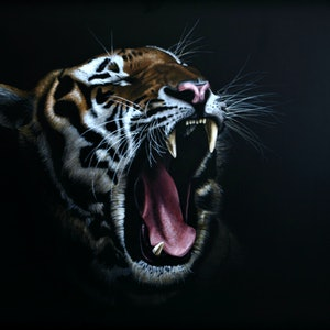 (CreativeWork) Tigress by Bec Bartell. acrylic-painting. Shop online at Bluethumb.