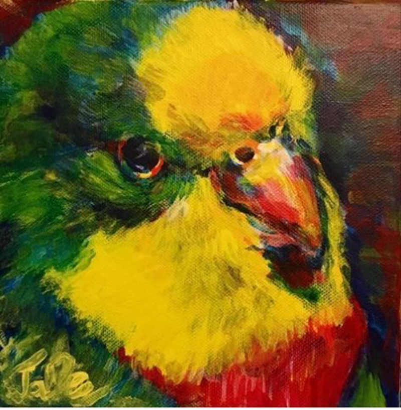 (CreativeWork) Little Parrot by Skye Stephenson. arcylic-painting. Shop online at Bluethumb.