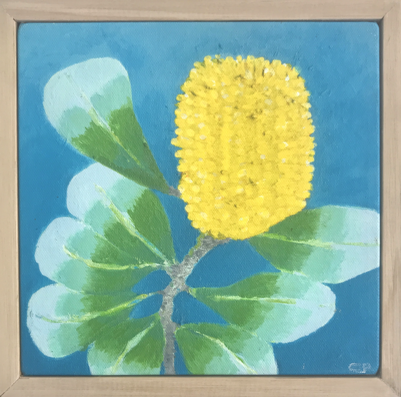 (CreativeWork) Coastal Banksia by Christina Power. print. Shop online at Bluethumb.