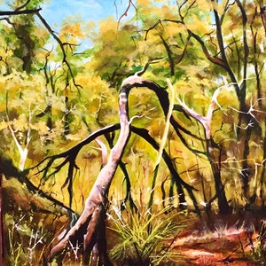 (CreativeWork) Kings Park (Perth, WA) by Stephen Kaldor. oil-painting. Shop online at Bluethumb.
