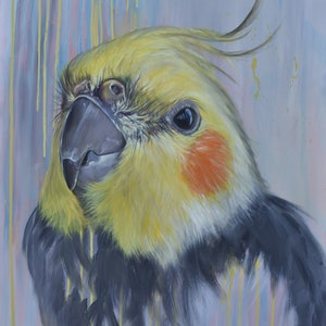 (CreativeWork) Rowdy sale reduced from $980 by Rebecca Hill. oil-painting. Shop online at Bluethumb.