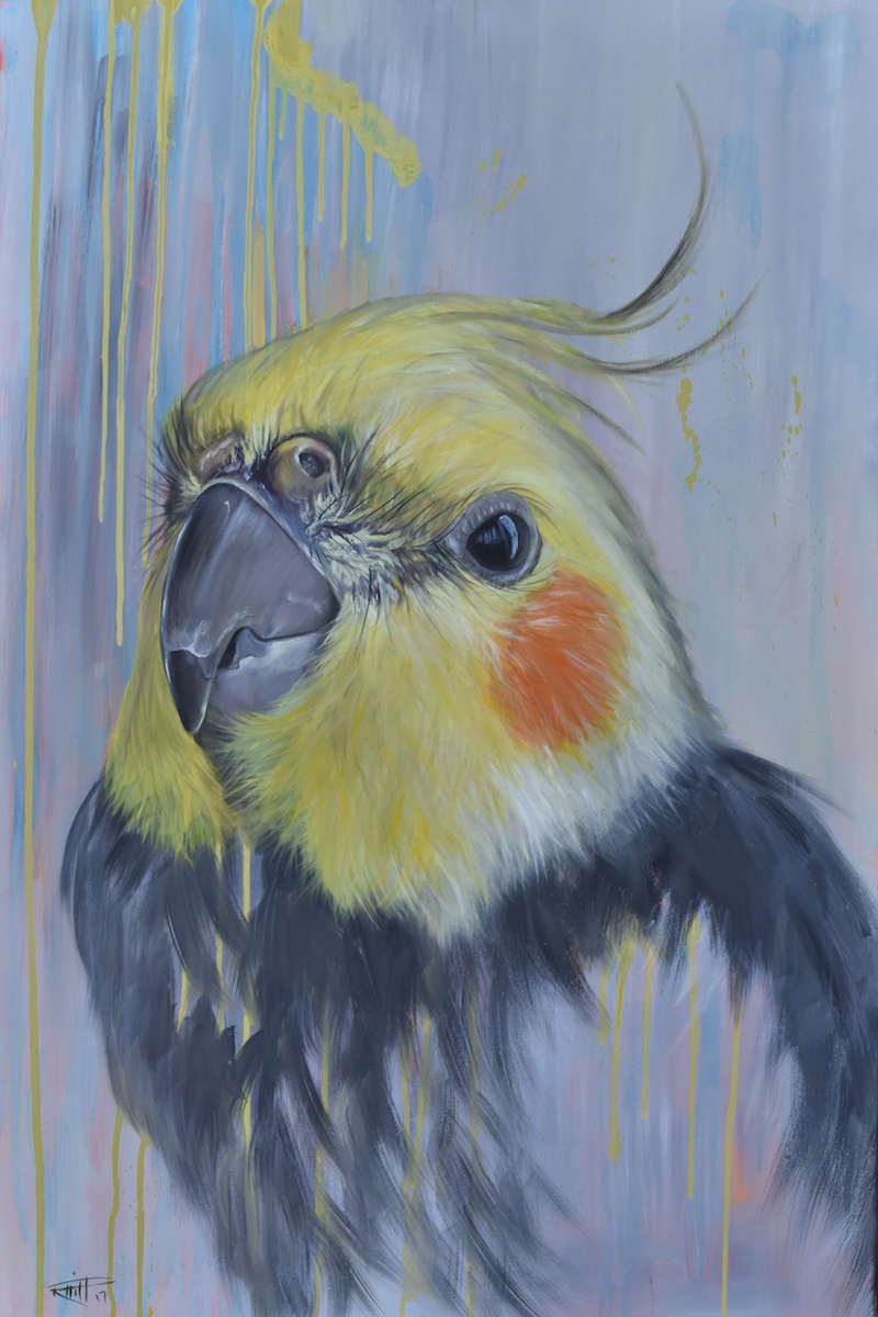 (CreativeWork) Rowdy by Rebecca Hill. oil-painting. Shop online at Bluethumb.