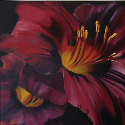 (CreativeWork) Daylily - Plum Perfect - Flowers Series I by Sarah Bary. Oil Paint. Shop online at Bluethumb.