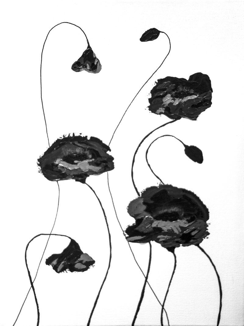 (CreativeWork) Poppies in Black by Barbara Payne. arcylic-painting. Shop online at Bluethumb.