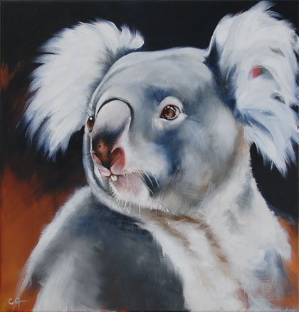 (CreativeWork) Koala by Carla Grace. oil-painting. Shop online at Bluethumb.